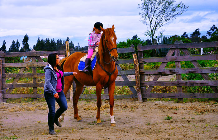 child having a horse riding lesson with an instructor